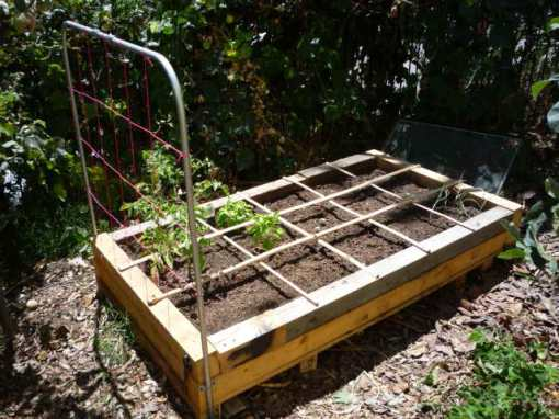 raised bed a la square-foot-gardening